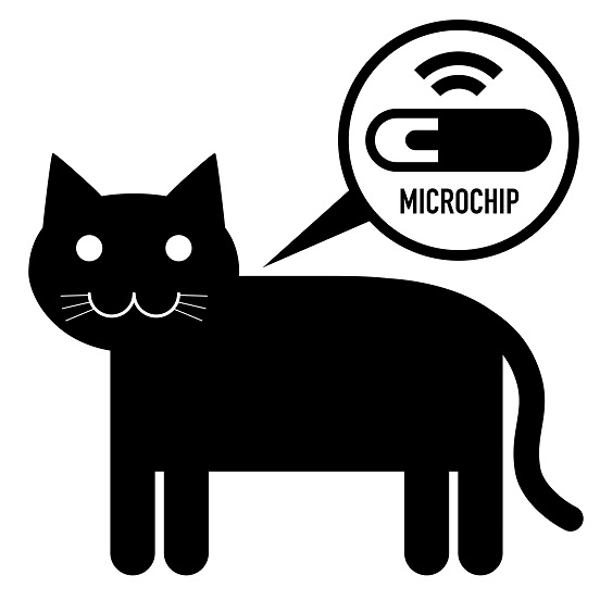 Where is the microchip