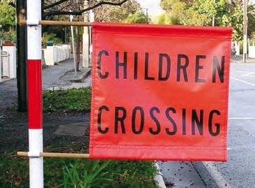 Emu Crossing Image