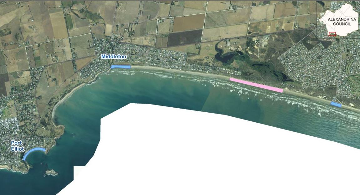 Coastal areas - dog