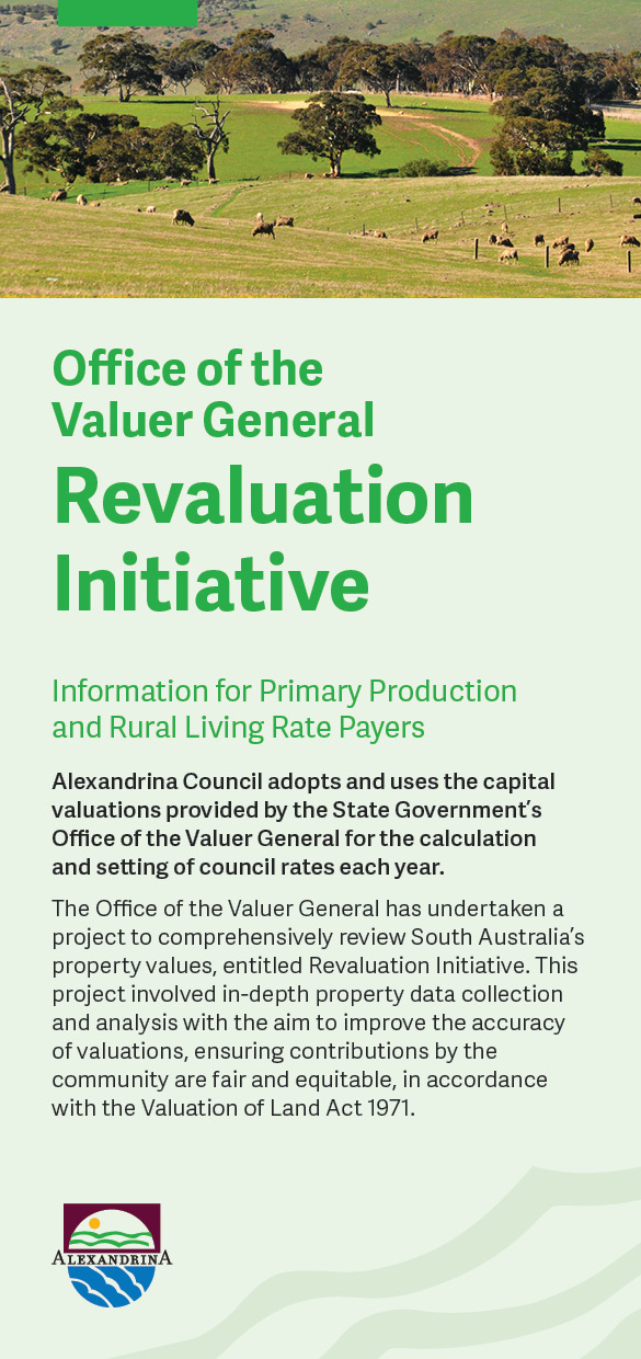 Revaluation Initiative DL Flyer_1